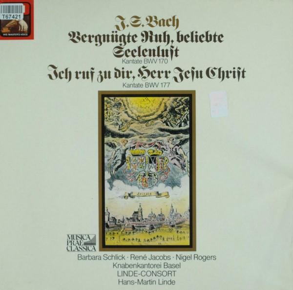 Johann Sebastian Bach, René Jacobs, Barbara: Vergnügte Ruh, beliebte Seelenlust Kantate BWV 170, Ich