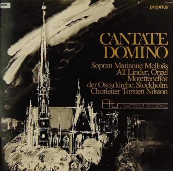 Verschiedene: Cantate Domino